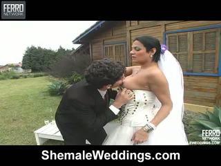 Porn Shemale Bride